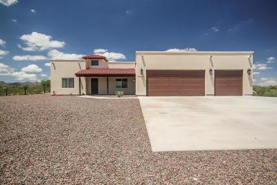 Tucson Single Family Home For Sale: 5385 N Silverbell Road
