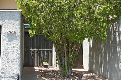 Tucson Townhouse Active Contingent: 2763 W Anklam Road #C