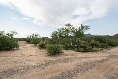 Residential Lots & Land For Sale: 13045 N Teal Blue Trail