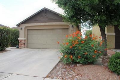 Tucson Single Family Home For Sale: 5855 N Orangetip Drive