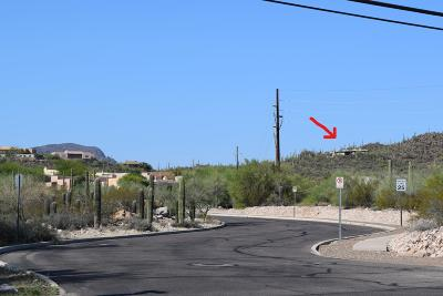 Tucson Single Family Home For Sale: 2855 W Speedway Boulevard