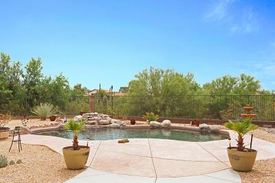 Tucson Single Family Home Active Contingent: 9598 N Marsh Wren Place