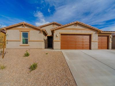 Marana Single Family Home For Sale: 12570 N Blondin Drive