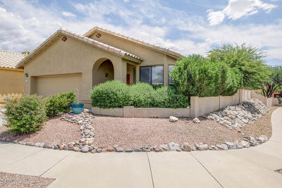 Tucson Single Family Home For Sale: 1249 W Crystal Palace Place