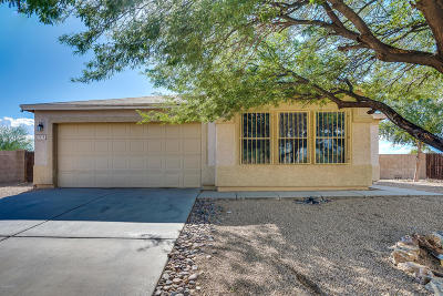 Pima County Single Family Home For Sale: 7216 S Sand Dune Valley Drive
