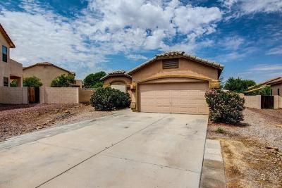 Single Family Home For Sale: 4480 S Avenida Don Pepe