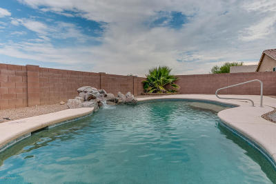 Sahuarita Single Family Home For Sale: 1181 E Madera Grove Lane