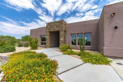 Tucson Single Family Home For Sale: 11410 N Shannon Road