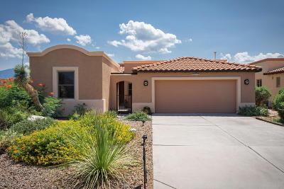 Single Family Home For Sale: 2229 Paseo Tumacacori