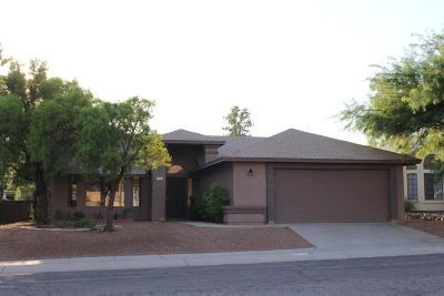 Tucson Single Family Home For Sale: 9741 N Camino Del Fierro