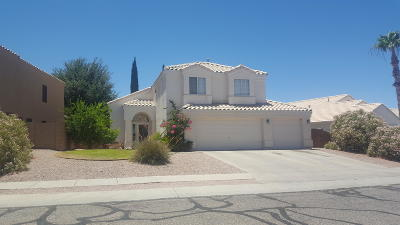 Tucson Single Family Home For Sale: 5273 W Fireopal Way