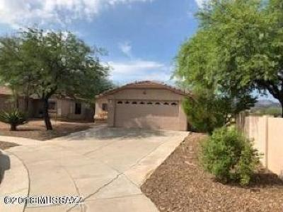Tucson Single Family Home For Sale: 6609 W Blythe Place SW