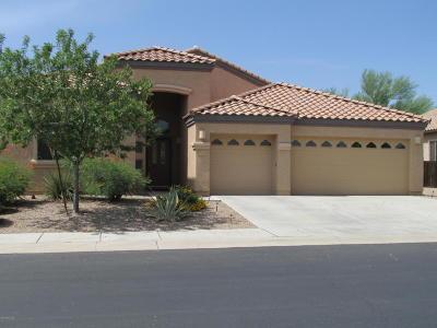 Marana Single Family Home For Sale: 11099 W Caracara Drive