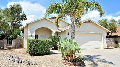 Tucson Single Family Home For Sale: 2570 W Amberbrooke Place