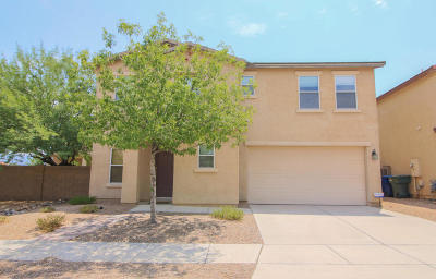Tucson Single Family Home For Sale: 3426 N River Rapids Drive