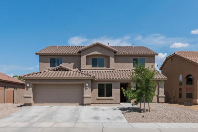 Pima County Single Family Home For Sale: 4077 S Alexandrite Avenue