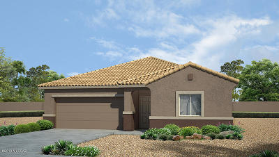 Marana Single Family Home For Sale: 9100 W Silver Cholla Drive