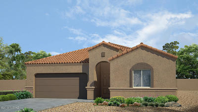 Marana Single Family Home For Sale: 9701 N Howling Wolf Road