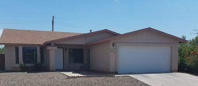 Pima County Single Family Home For Sale: 4741 W Juneberry Lane
