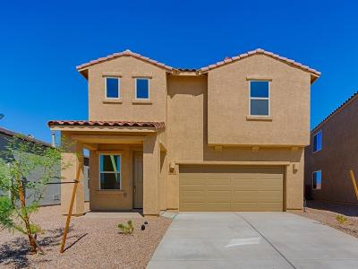 Sahuarita Single Family Home For Sale: 947 E Prairie Field Lane