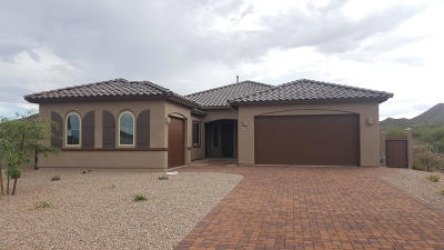 Tucson Single Family Home For Sale: 1160 S Castar Drive