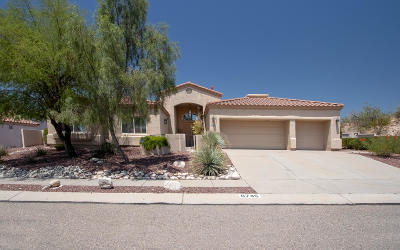 Tucson Single Family Home For Sale: 6745 N Shadow Run Drive