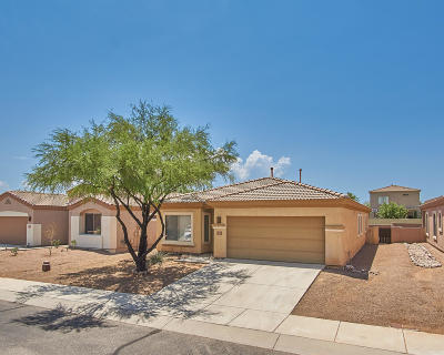 Pima County Single Family Home For Sale: 256 E Placita Nubes Blancas