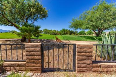 Green Valley Single Family Home Active Contingent: 2096 E Desert Fox Drive