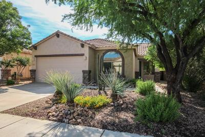 Oro Valley Single Family Home Active Contingent: 1171 W Doolan Drive