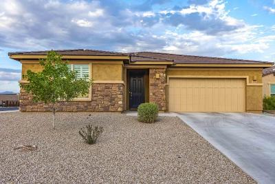 Oro Valley Single Family Home For Sale: 11740 N Sweet Orange Place