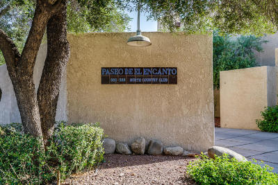 Tucson Townhouse For Sale: 588 N Country Club Road