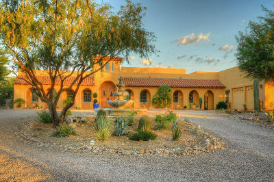 Pima County, Pinal County Single Family Home For Sale: 602 E Corte Pasadera Cobrizo