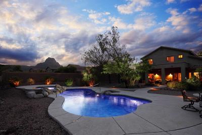 Tucson Single Family Home For Sale: 8088 N Iron Ridge Drive