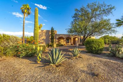 Tucson Single Family Home For Sale: 7722 N Camino De Maximillian