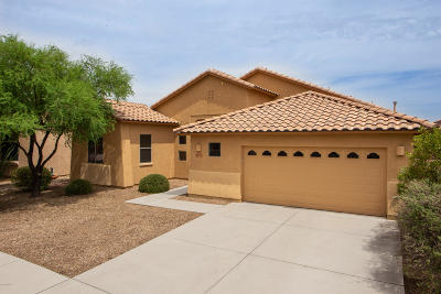 Tucson Single Family Home For Sale: 7124 W Lost Bird Drive