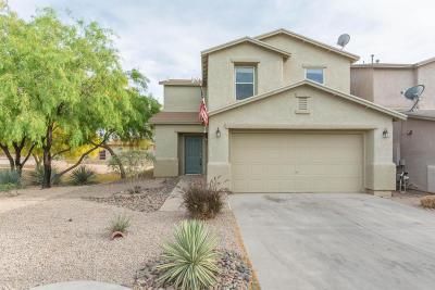 Tucson Single Family Home For Sale: 3141 W Treece Way