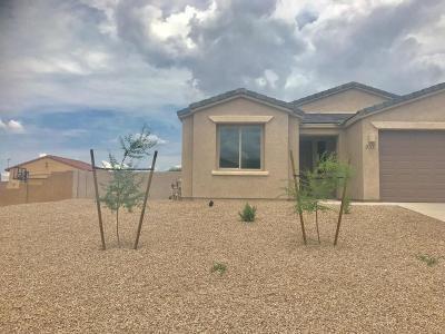 Vail Single Family Home Active Contingent: 9707 S San Esteban Drive