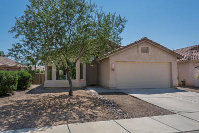 Tucson Single Family Home For Sale: 2249 W Catalina View Drive