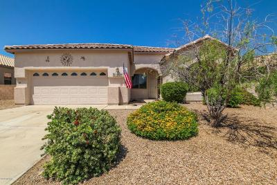 Pima County, Pinal County Single Family Home For Sale: 16186 S Sheffield Drive
