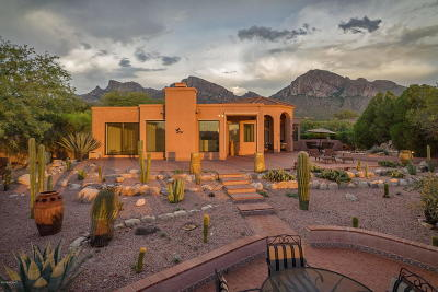 Oro Valley Single Family Home For Sale: 10336 N Alder Spring Drive
