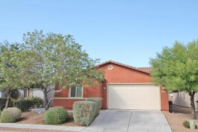 Pima County, Pinal County Single Family Home For Sale: 5087 E Kittentails Drive