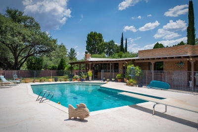 Tubac Single Family Home For Sale: 6 Ray Lane