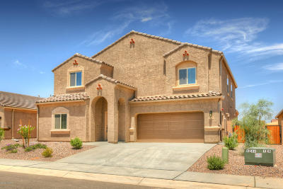 Marana Single Family Home For Sale: 9116 W Blue Saguaro Street