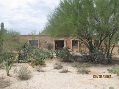 Tucson Single Family Home For Sale: 1640 W Caspian Drive