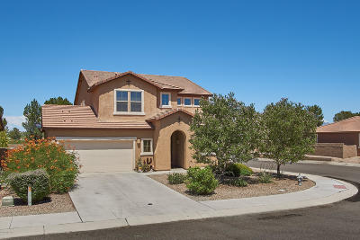 Tucson Single Family Home For Sale: 8390 N Mountain Stone Pine Way
