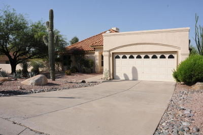 Tucson Single Family Home For Sale: 6372 E Calle Cavillo