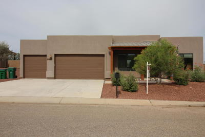 Vail Single Family Home For Sale: 9356 S San Estaban Drive