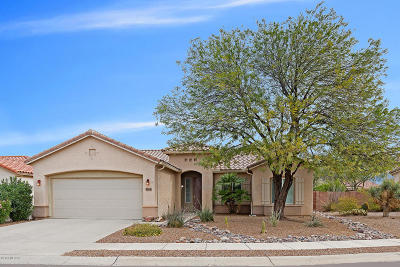 Tucson Single Family Home For Sale: 9864 N Scarlet Ranges Lane