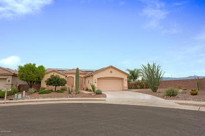 Tucson Single Family Home For Sale: 9747 N Wonderock Place