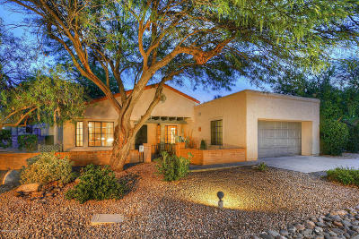 Pima County Single Family Home For Sale: 3041 N Willow Creek Drive